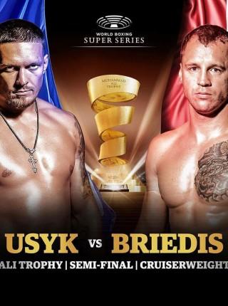 Usyk vs Briedis
