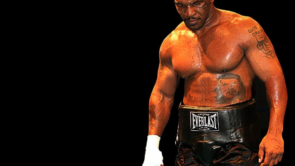 Boxen1 Schwergewichts Champions