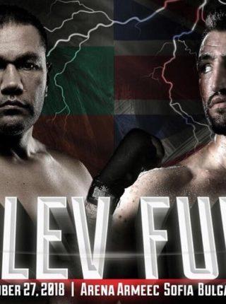pulev-vs.-fury-fightposter
