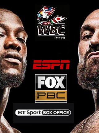 Wilder vs Fury 2 Poster